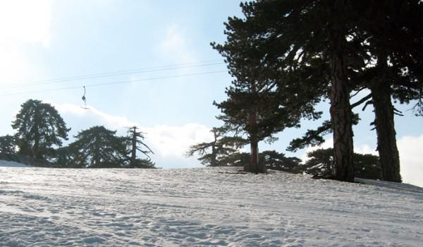 Олимпус: снег на Кипре — это реально!