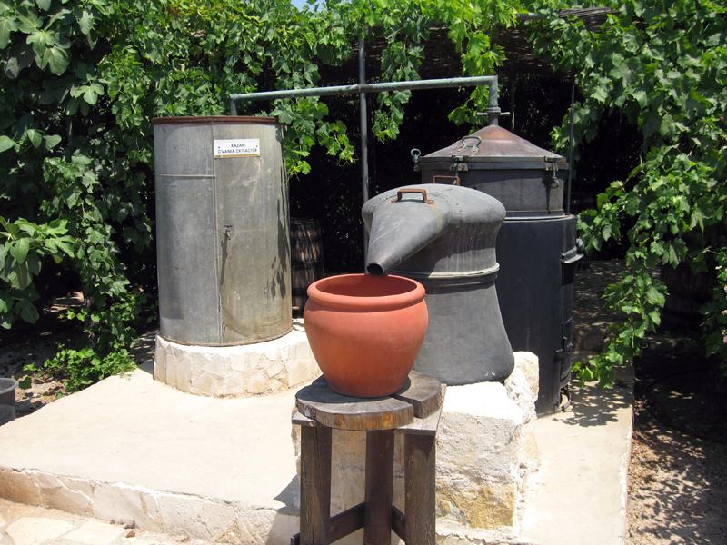 Жизнь на Кипре. Ботанический парк Eleouthkia