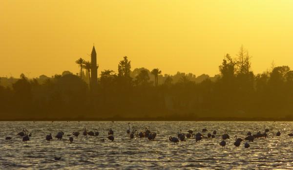 Соленое озеро Ларнаки