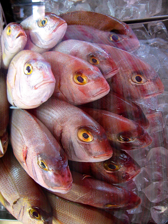 Рыбный ресторан на Кипре
