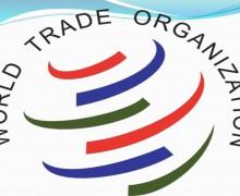 Всемирная организация по туризму