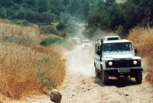 Сафари на Кипре