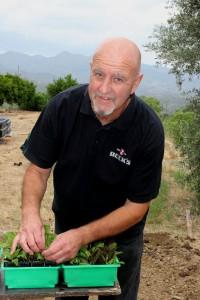Эд выращивает джинуру в пригороде Лимассола