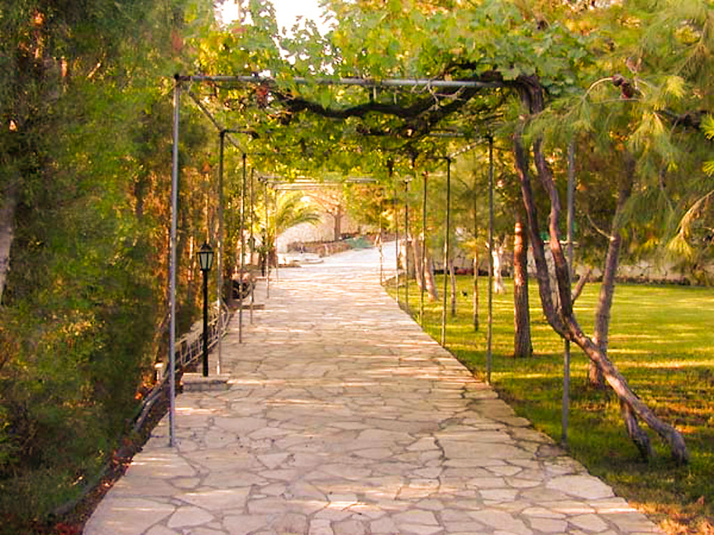Вилла с парком в Пиргос, виноградник