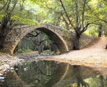Венициантский мост Tzielefos
