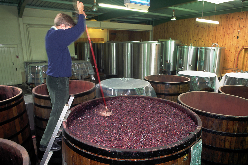 Кипрская винодельня