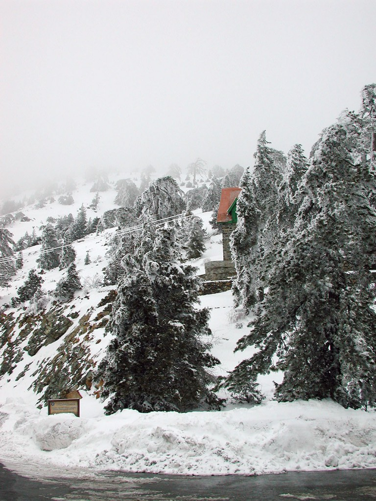 Troodos in the winter