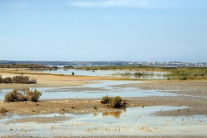 Salt lakes in Akrotiri