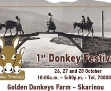 Фестиваль осликов