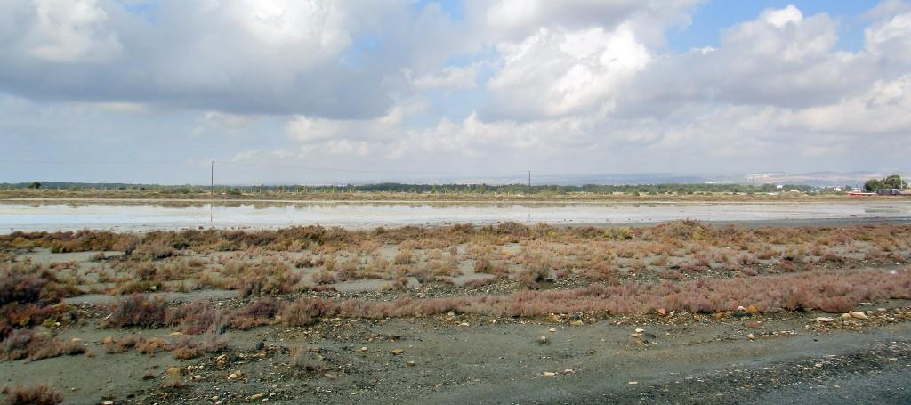 the salt lake in Limassol
