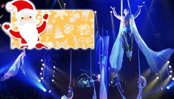 Шоу цирка Les Farfadais