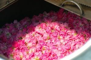 Производство косметики из роз