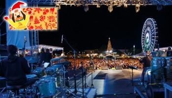 Концерт греческих рок групп