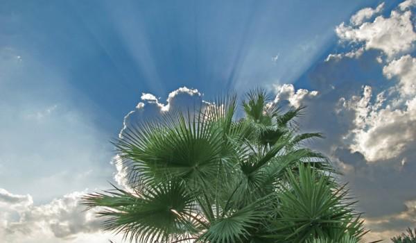 Погода на Кипре зимой: прогноз до 18 января