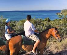 Верховая езда и конный спорт на Кипре