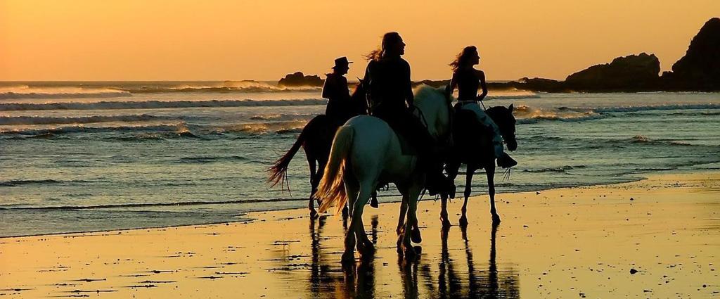 Верховая езда на Кипре