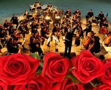 Концерт - Магия любви