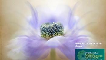 Фотовыставка цветов и растений в Лимассоле