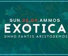 Вечеринка Exotica в Ammos Beach Bar