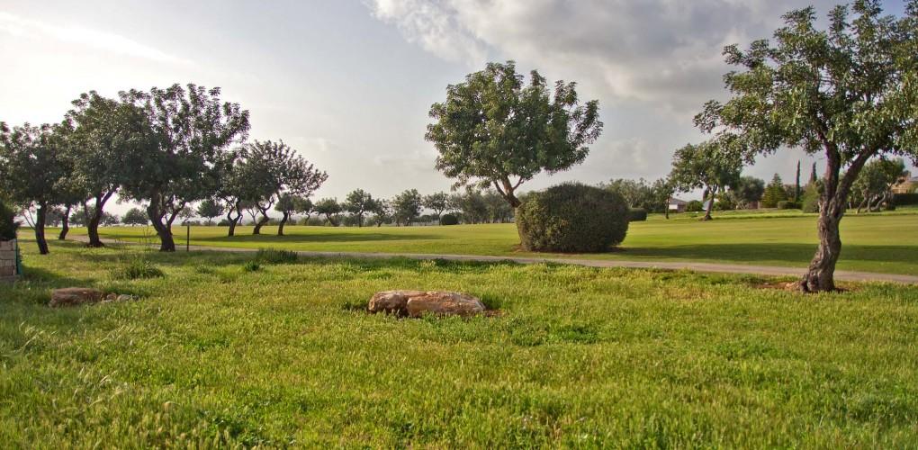 «Афродайт Хиллс» — курорт для постоянного проживания (часть 1)