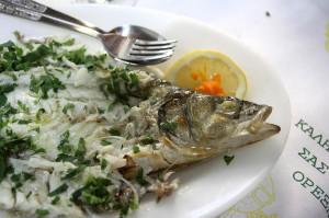 Сибас в рыбной таверне Gold Lemon