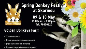 фестиваль на ослиной ферме