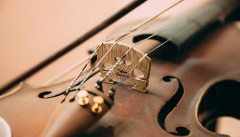 Вечер живой музыки в My Miniatures