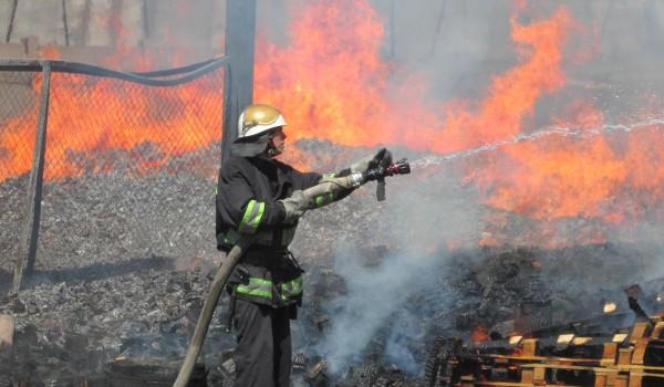 Пожар в Киевской области продолжается