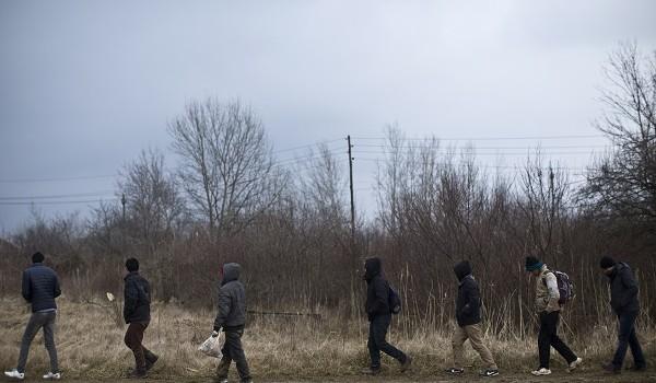 Сербские нелегалы атакуют Будапешт