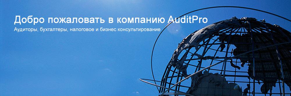 AuditPro Services
